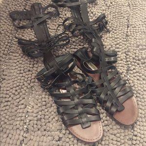 Steve Madden Sparta gladiator sandals